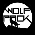 NoOrdinaryLove_WolfPackS